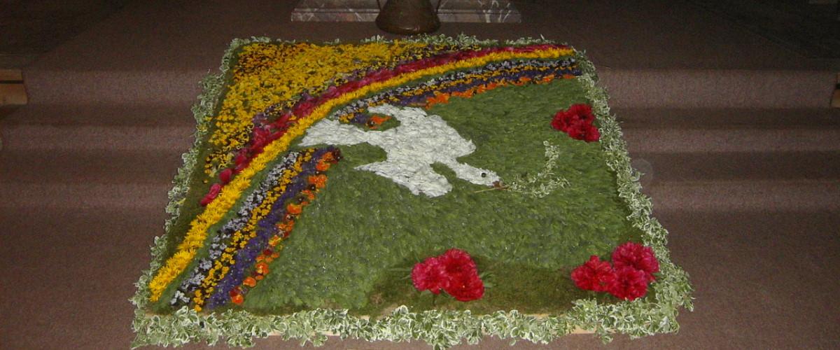 Fronleichnam - Blütenteppich